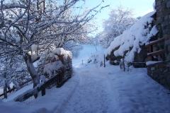 hiver-014